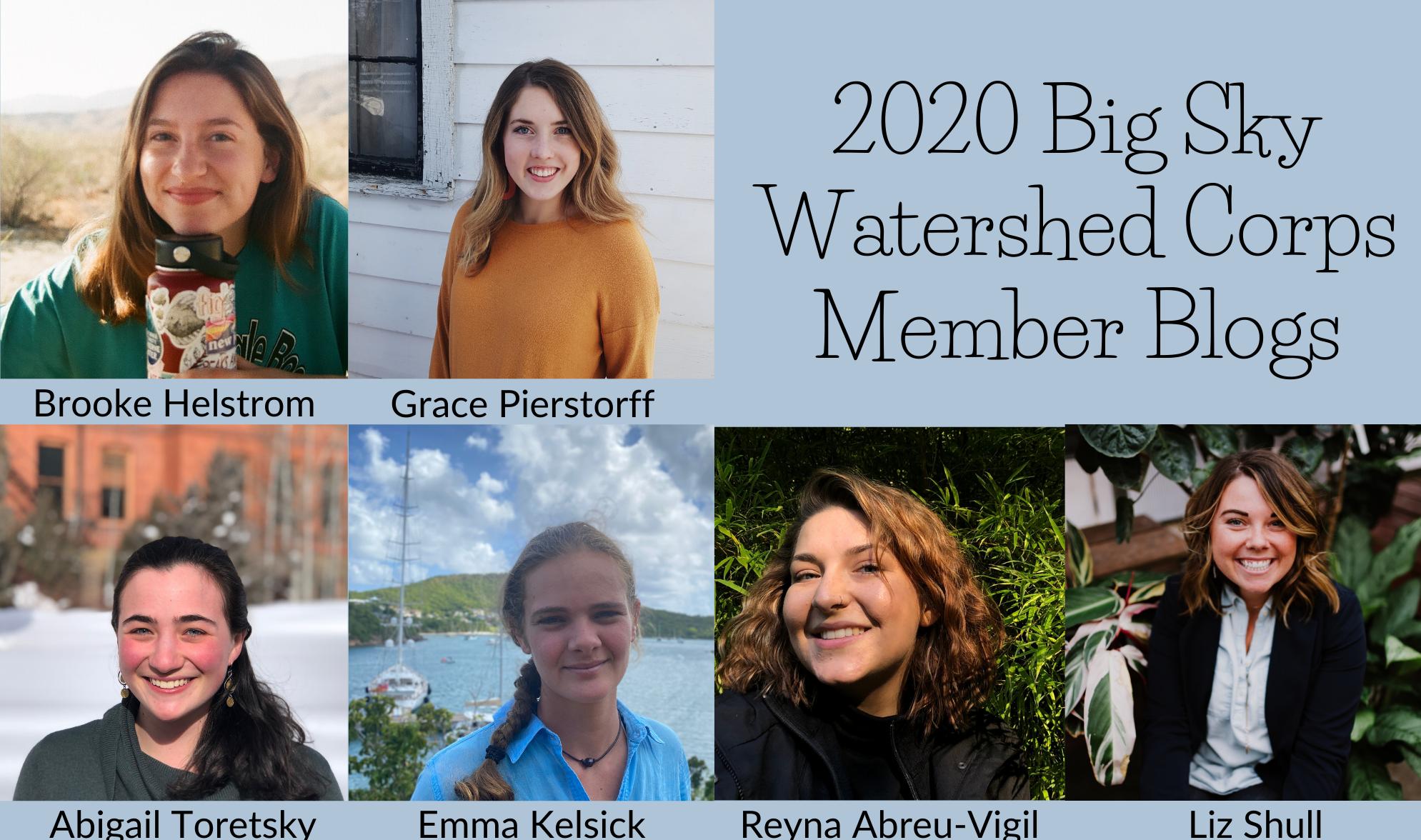 2020 BSWC blogs