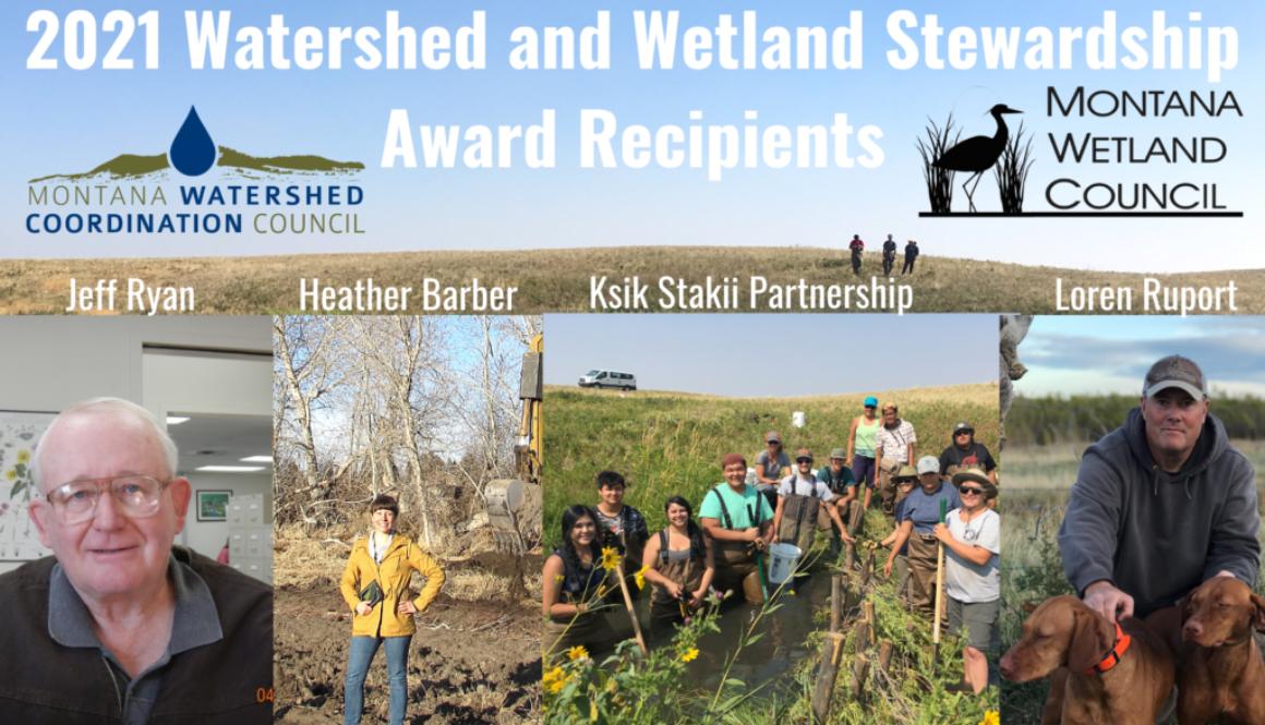2021 Watershed and WEtlands Stewardship Award Winners (3)