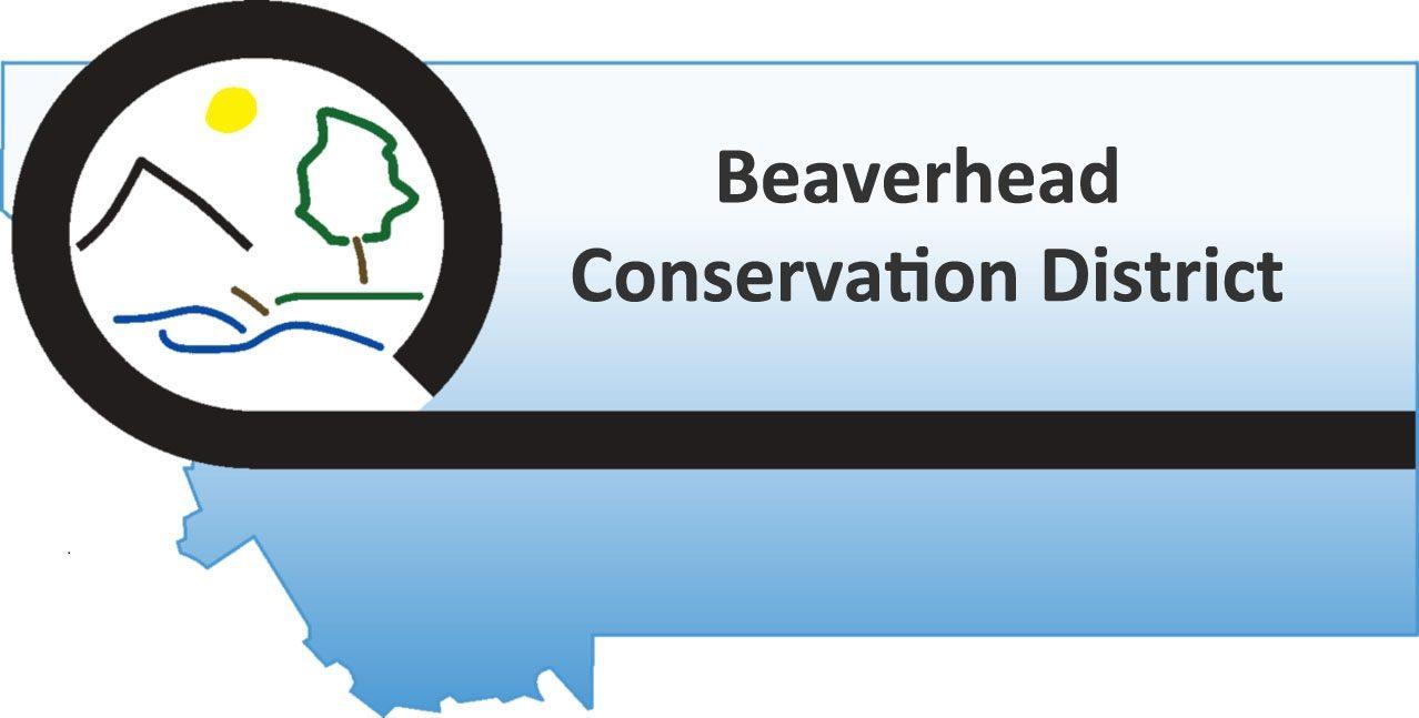 BCD-Logo