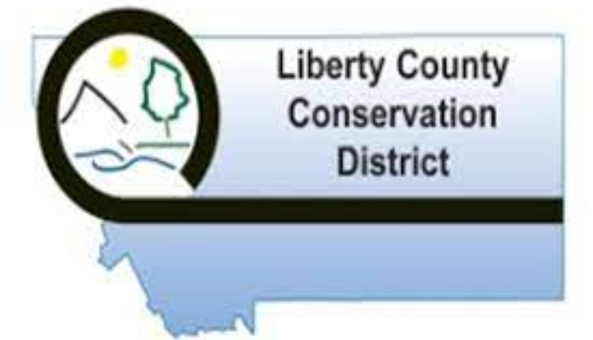 Liberty County CD