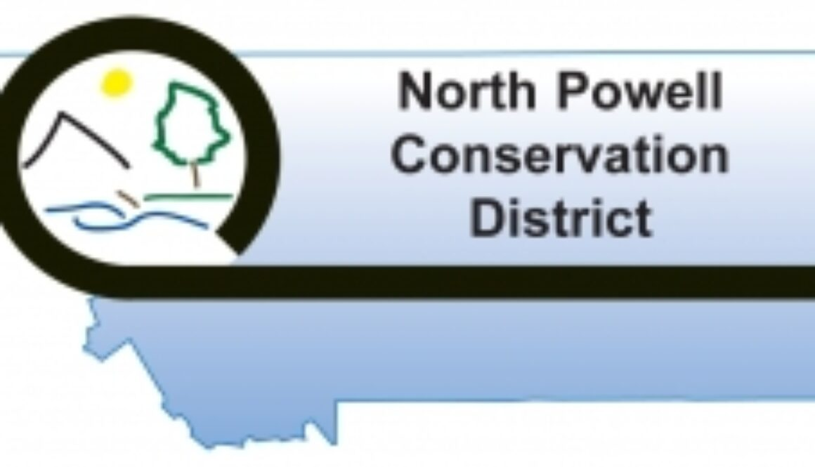 North Powell CD logo