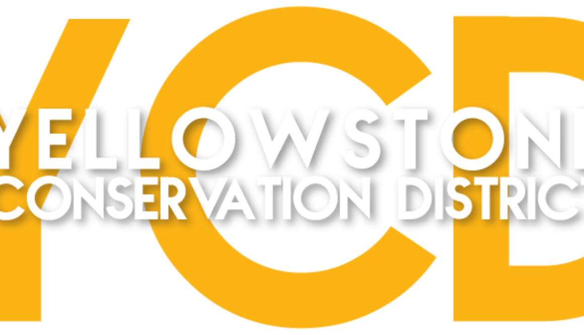 Yellowstone CD logo