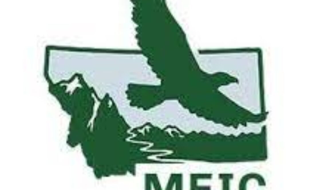 meic logo