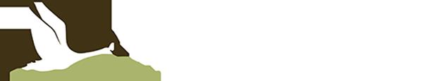 IWJV-main-logo-white
